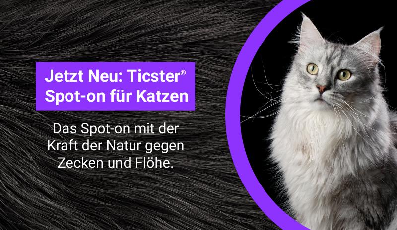 Ticster für Katzen